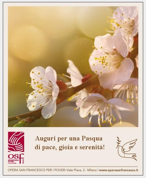 E-cards OSF