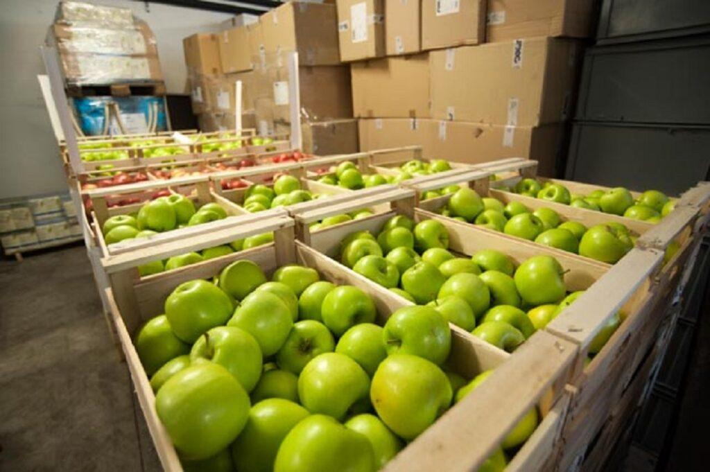 donare cibo ai poveri OSF mensa