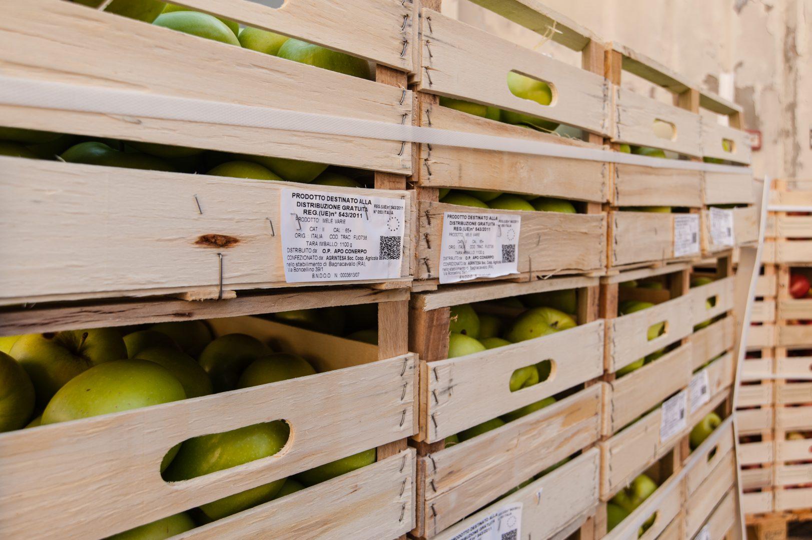 Casse di mele | OSF
